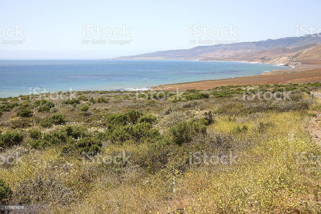 Overlooking Jalama Beach, California stock photo