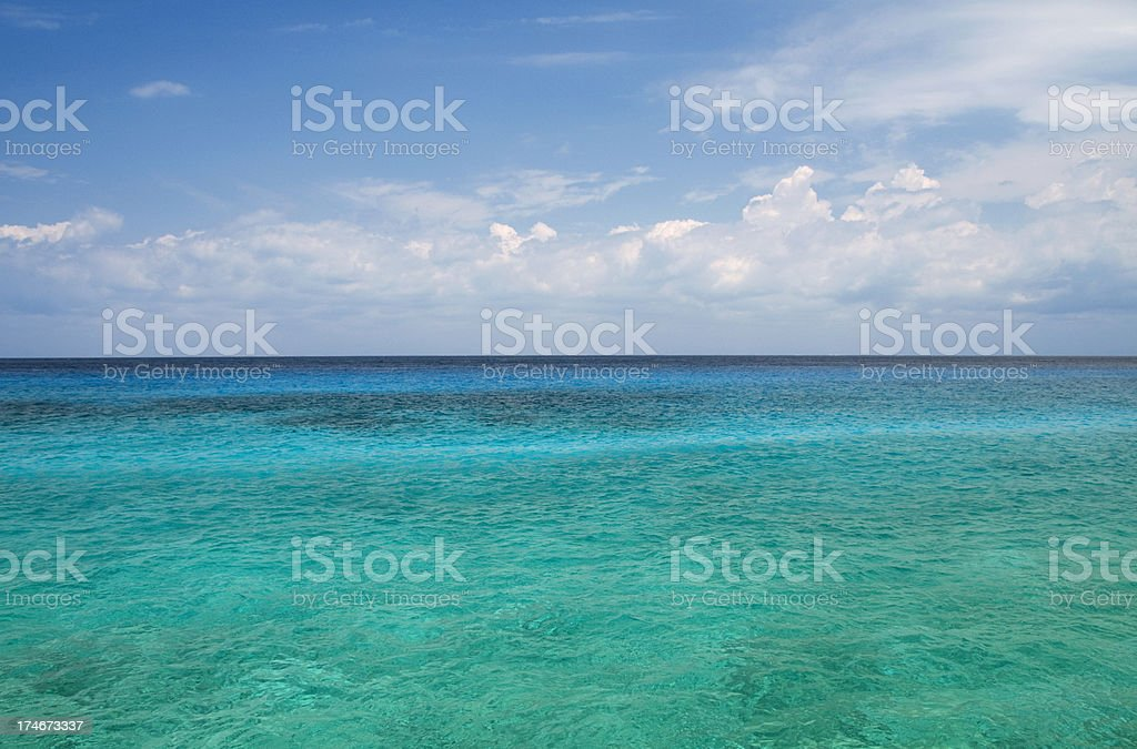 Overlooking the Ocean royalty-free stock photo
