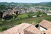 Overview at the town of Mendrisio