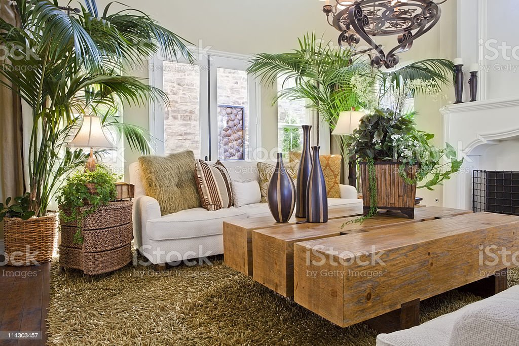 Overview of natural nature themed living room royalty-free stock photo