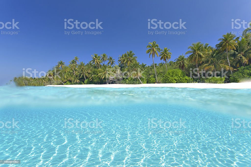 overwater underwater split shot royalty-free stock photo