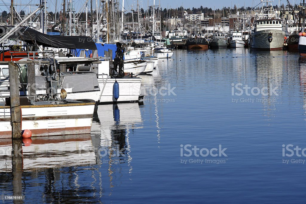 Overwintering Fishing Boats royalty-free stock photo