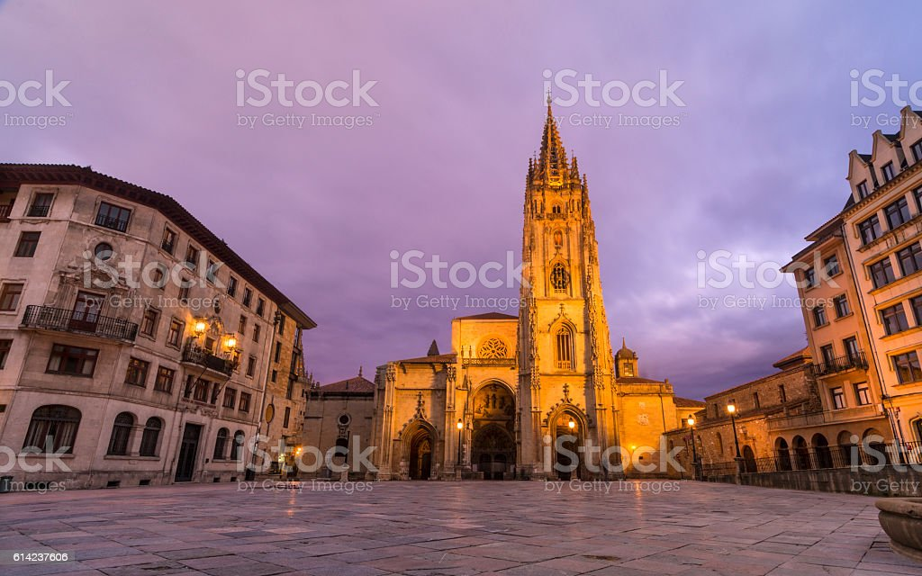 Oviedo,Cathedral stock photo