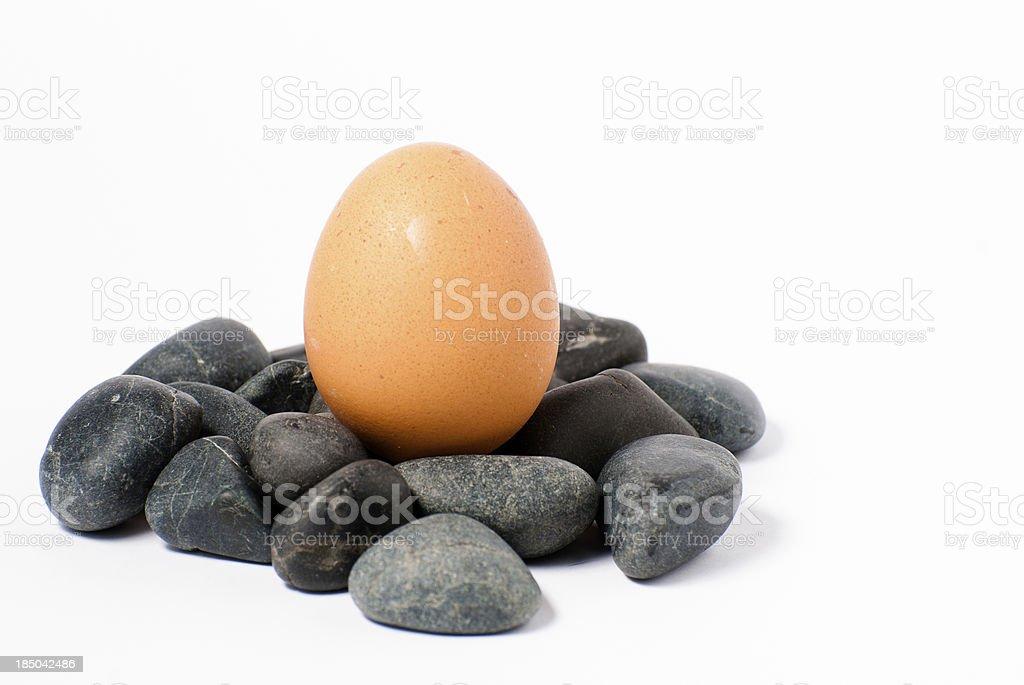 ovo a nascer das pedras royalty-free stock photo