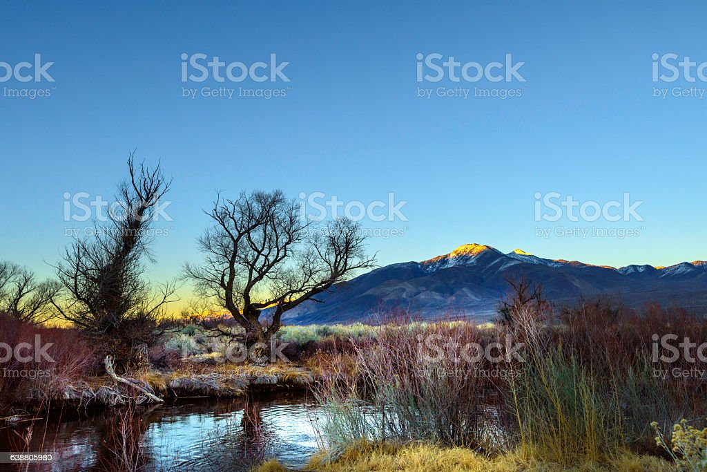 Owens River stock photo
