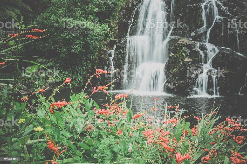 Owharoa Falls, Waterfalls, Coromandel, North Island, New Zealand stock photo