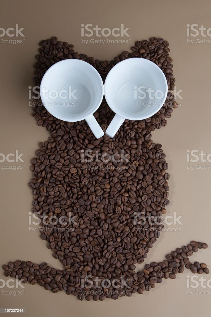 Owl coffee stock photo