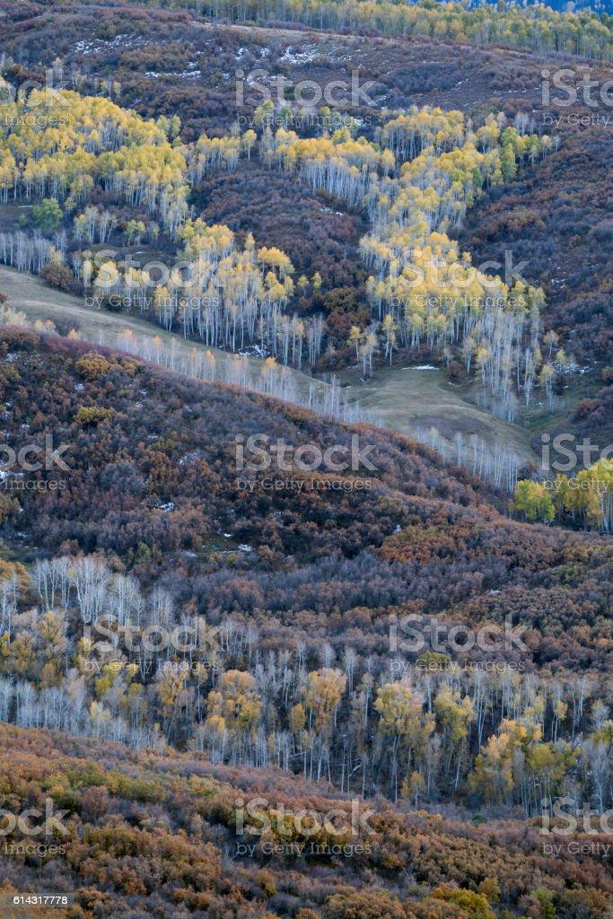 Owl Creek Pass Fall Colors stock photo