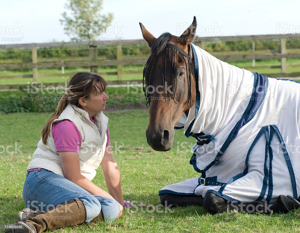 Owner and Horse stock photo