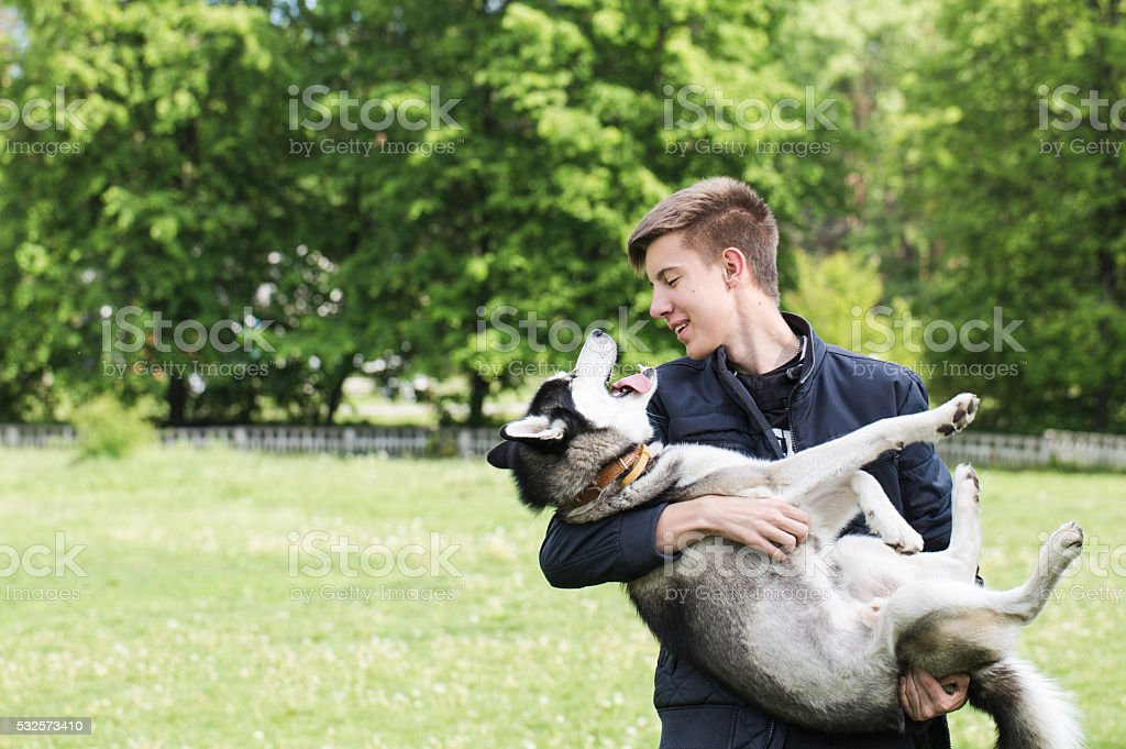 Owner and Siberian husky on a walk in the park. stock photo