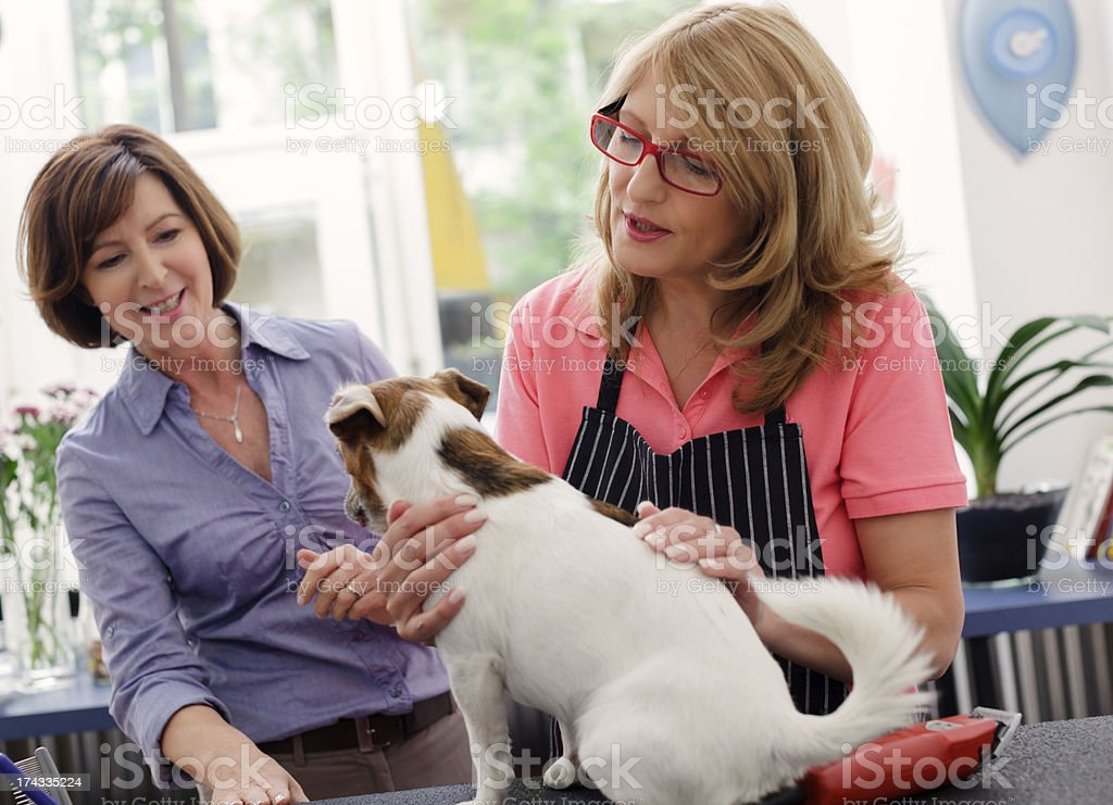 Owner of  Pet Grooming Salon stock photo