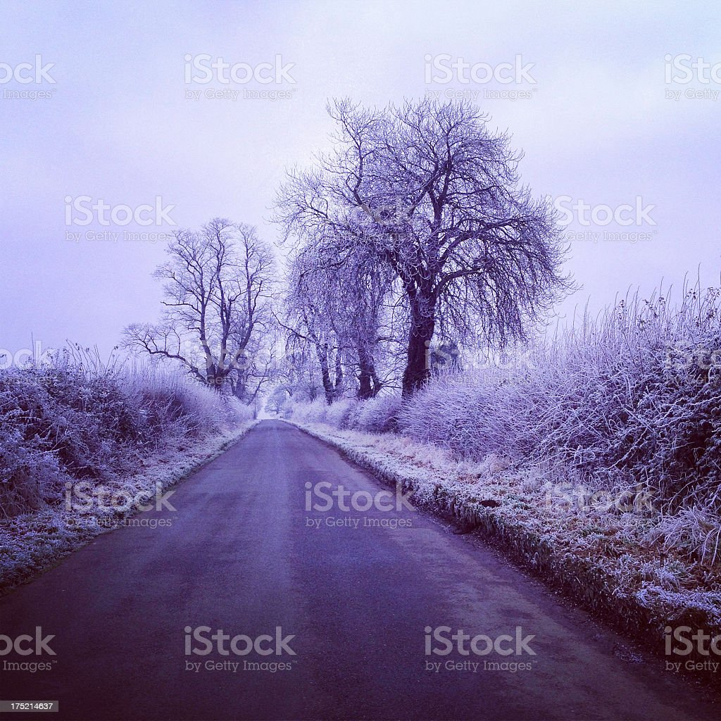 Oxfordshire countryside road on a frosty morning royalty-free stock photo
