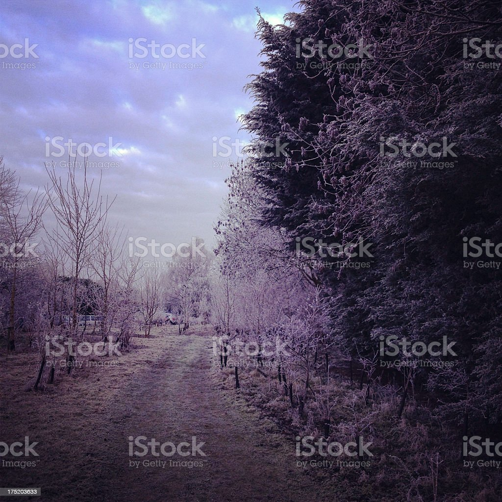 Oxfordshire countryside with frost royalty-free stock photo