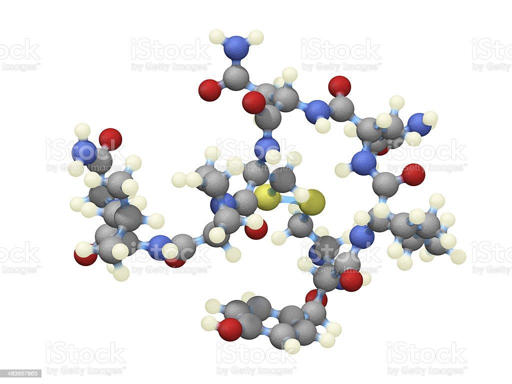 Oxytocin royalty-free stock photo