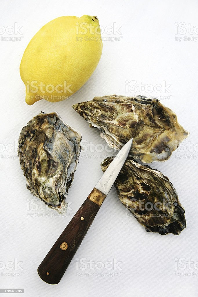 Oyster and lemon royalty-free stock photo