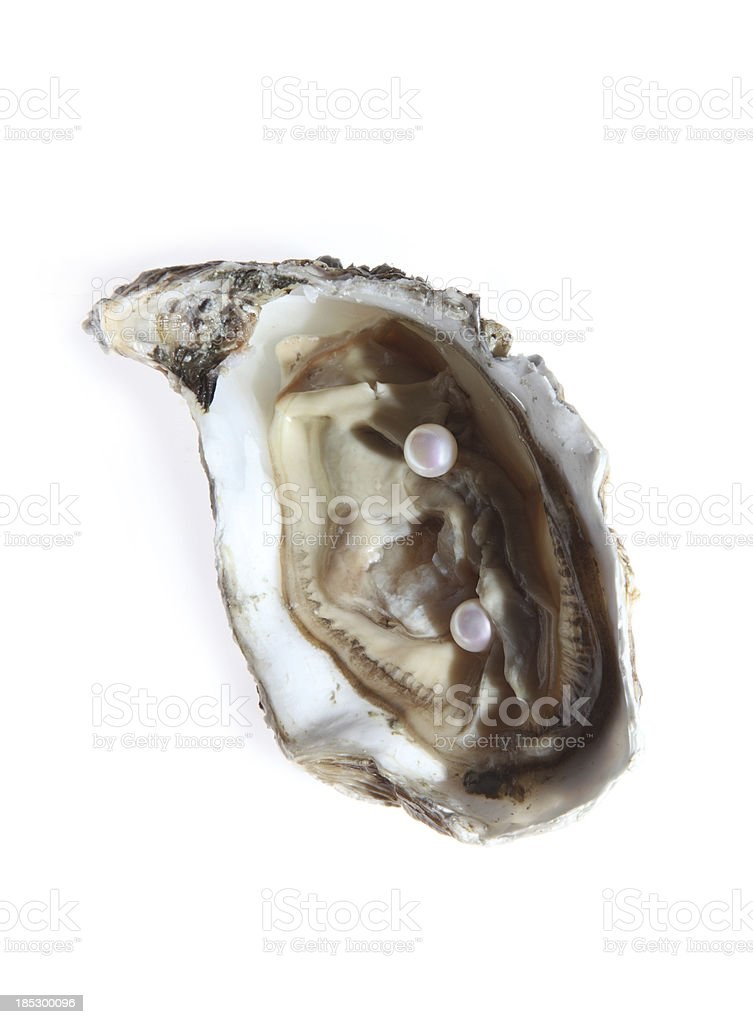 Oyster and pearls stock photo