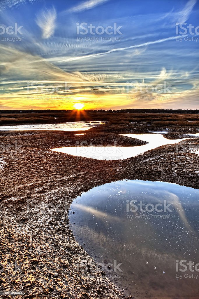 oyster beds hdr stock photo