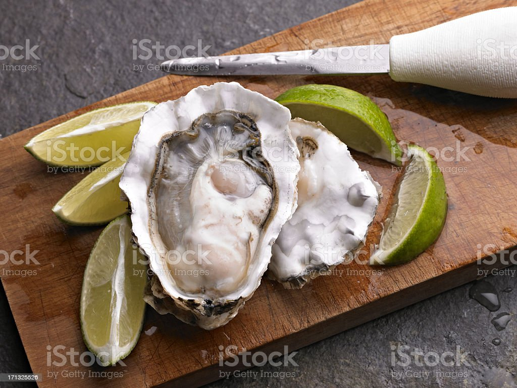 Oyster stock photo