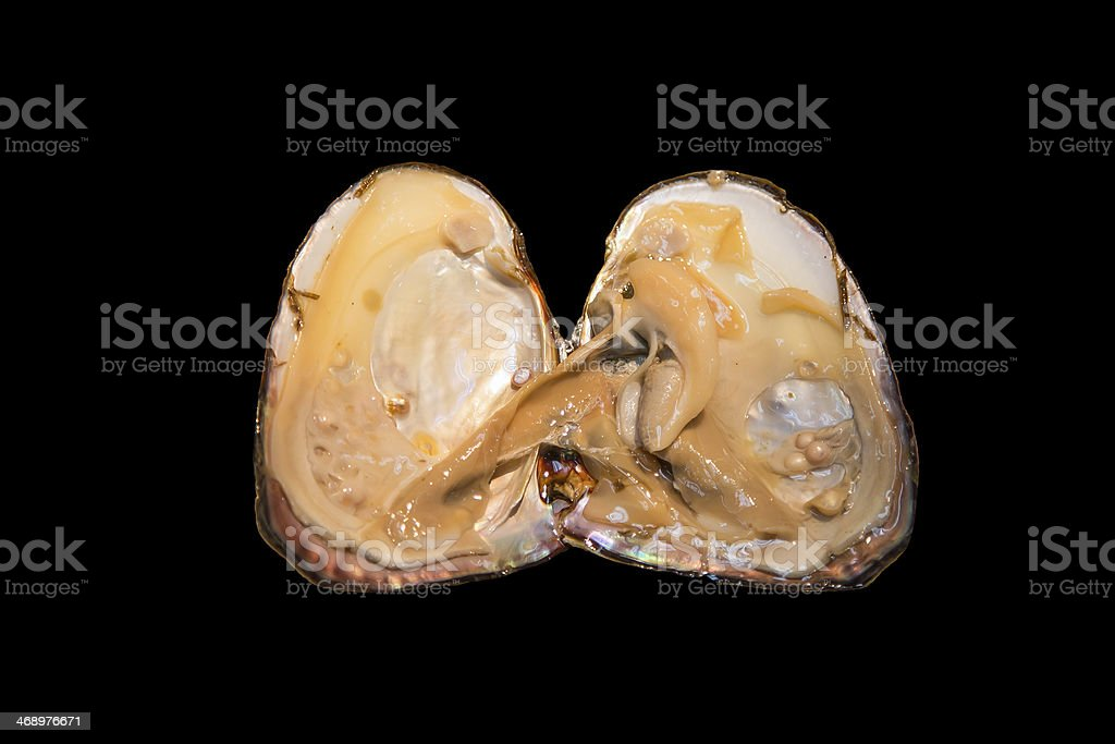 Oyster Shell and Pearl, isolation stock photo
