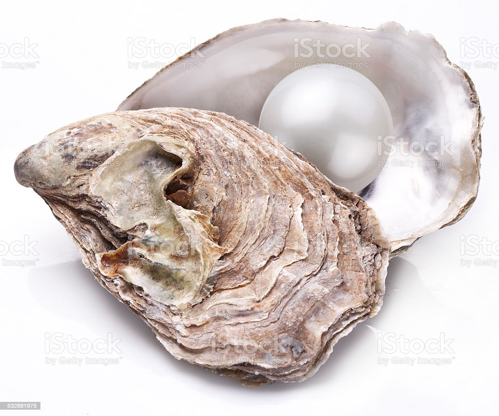 Oyster with pearl. stock photo