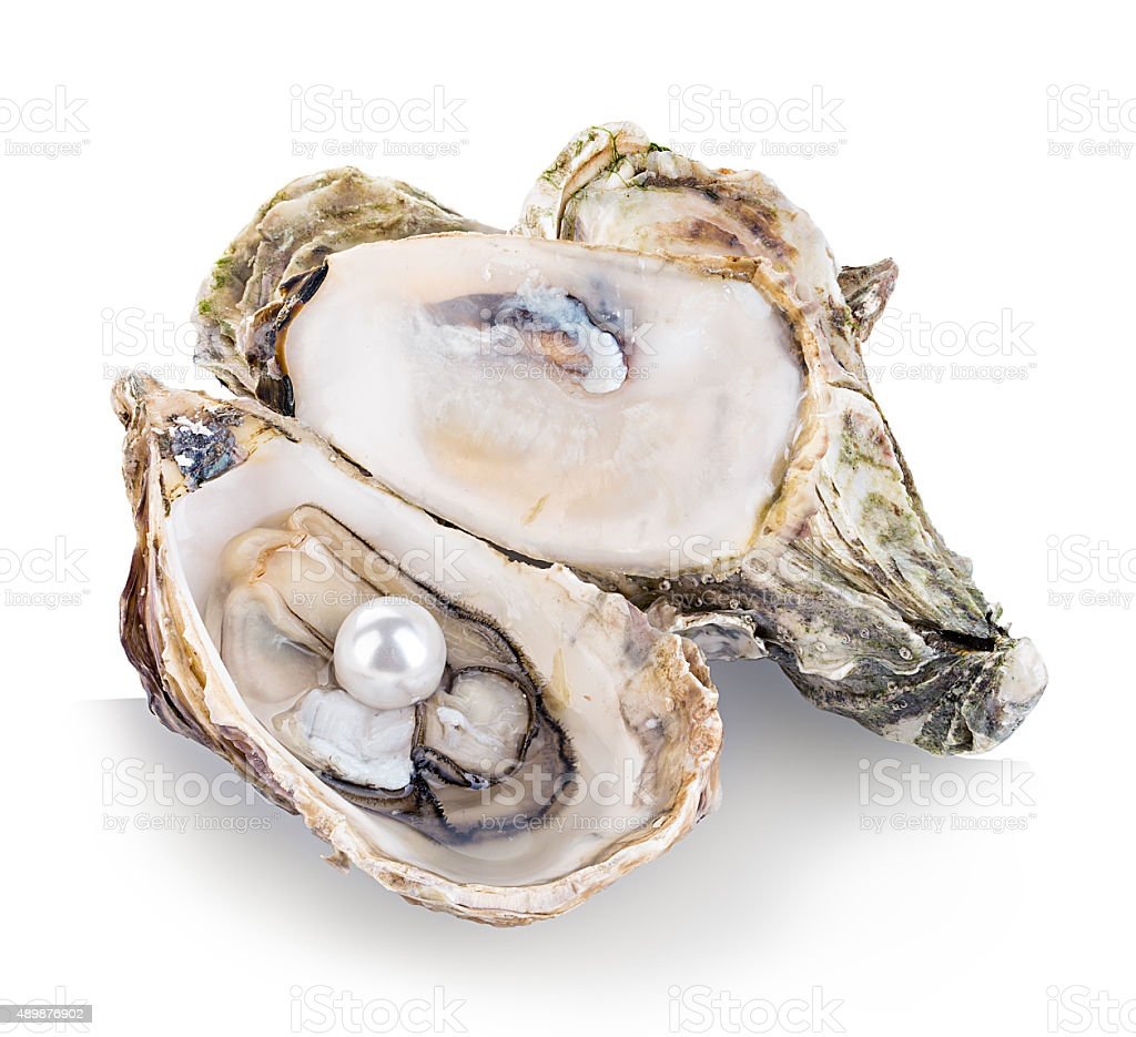 Oyster with pearls isolated on white background stock photo