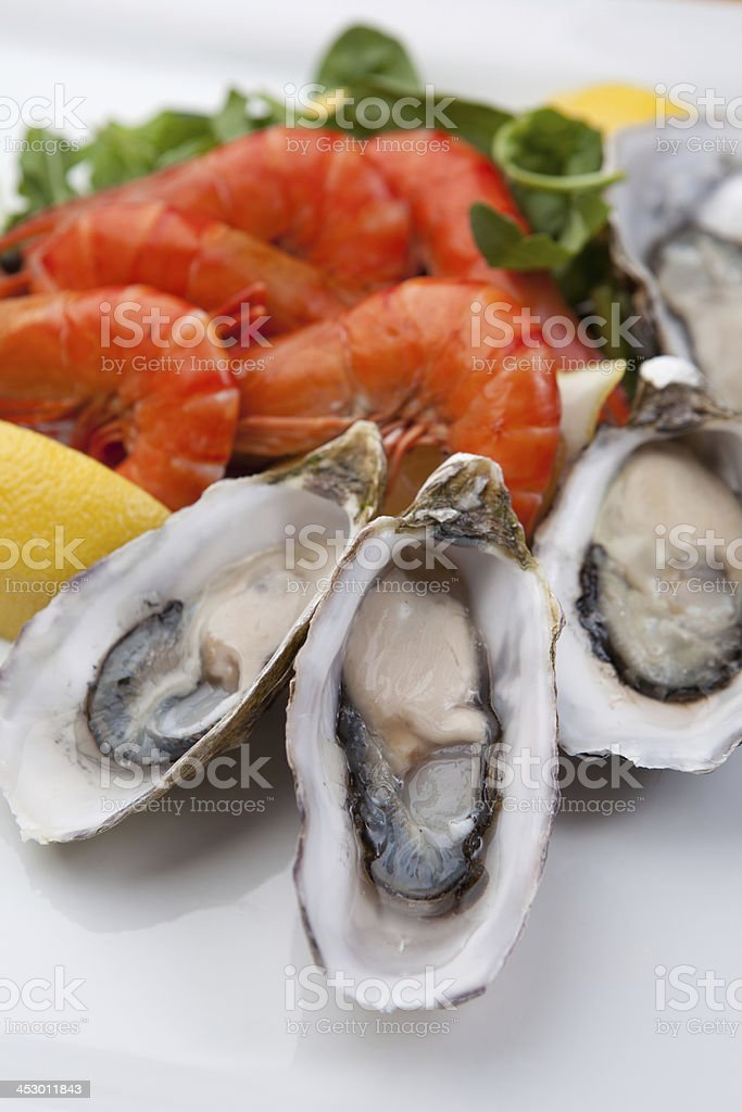 Oysters and Shrimp on a white plate stock photo