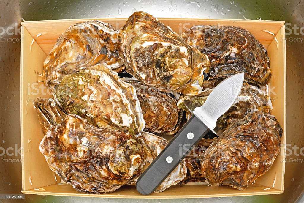 Oysters and Shucker stock photo
