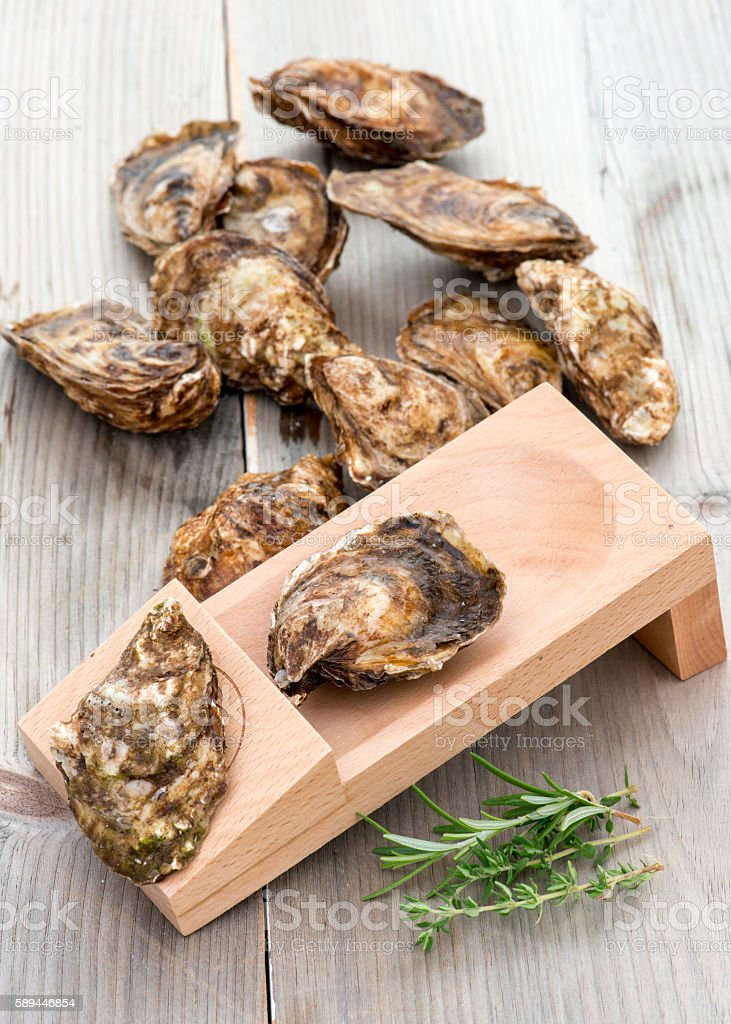 Oysters and shucking board on weathered wood table. stock photo