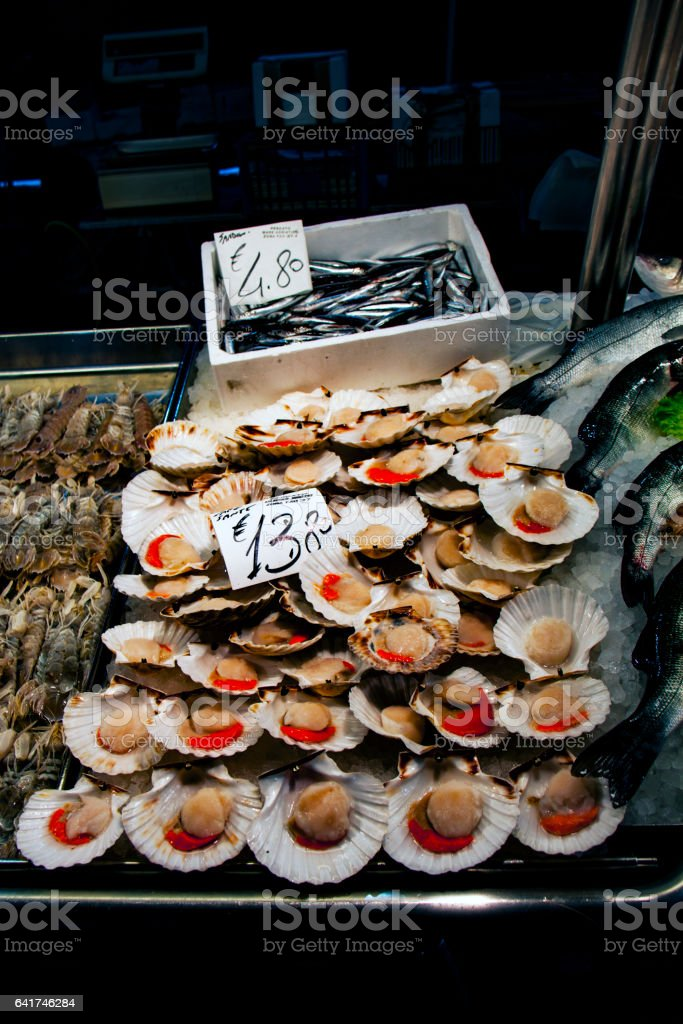 Oysters at Fish Market in Italy stock photo