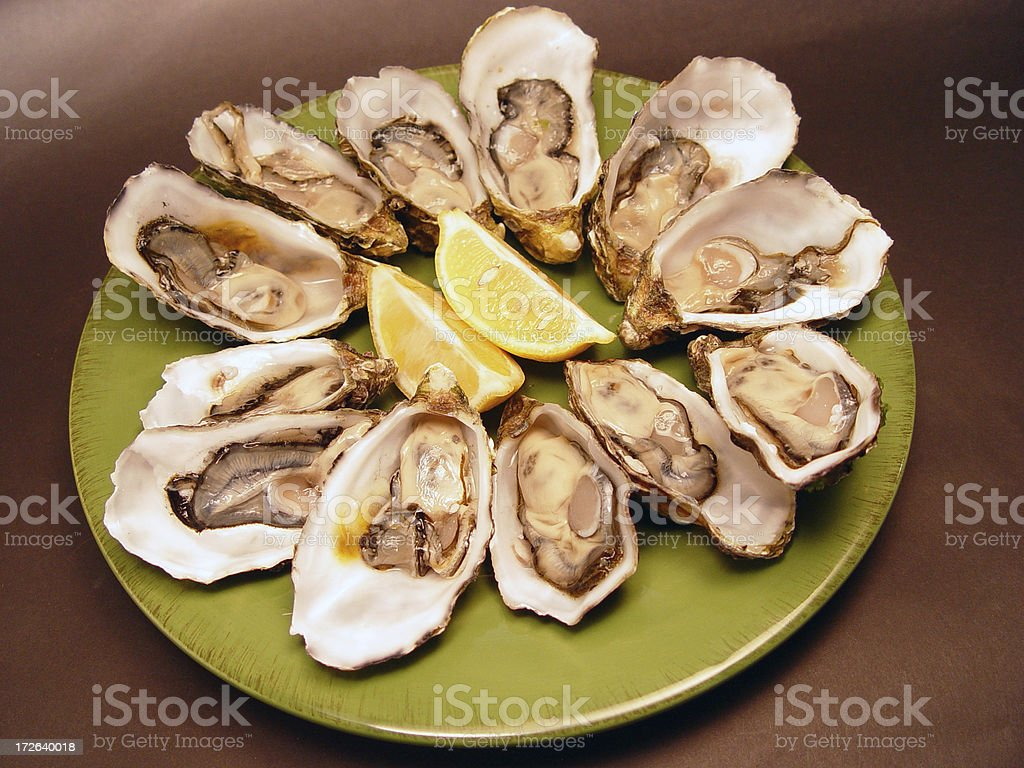 Oysters by the dozen stock photo