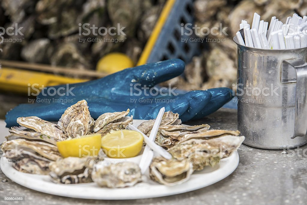 Ostriche, Cancale, Normandia, Francia royalty-free stock photo