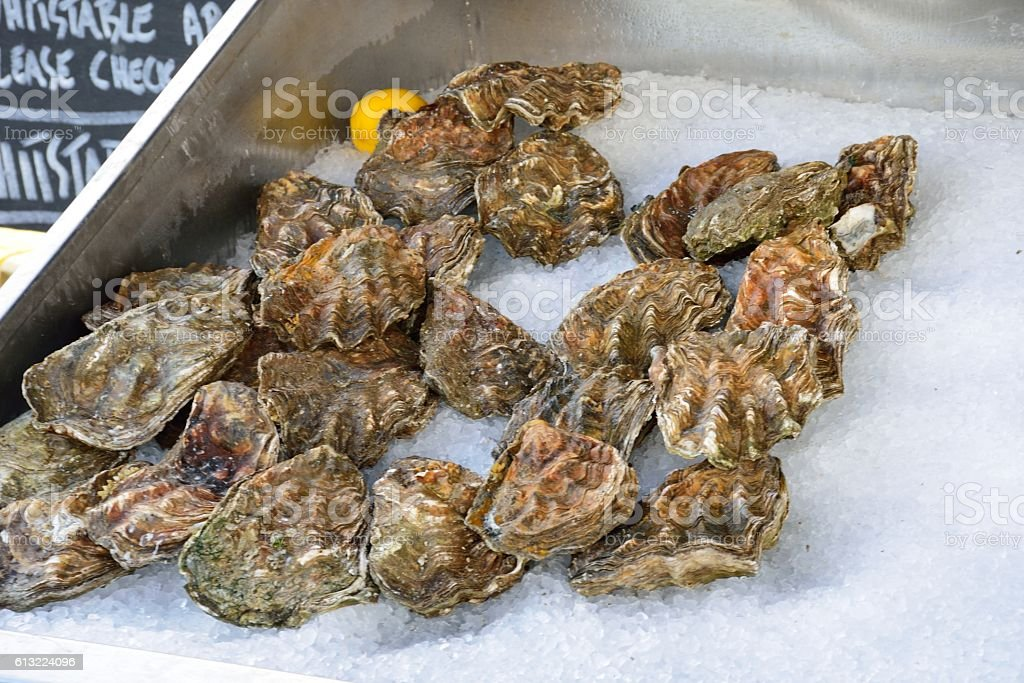oysters for sale stock photo
