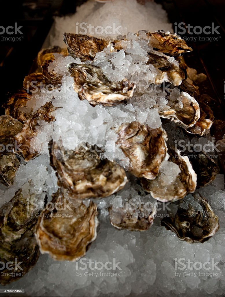 Oysters on a bed of crushed ice stock photo