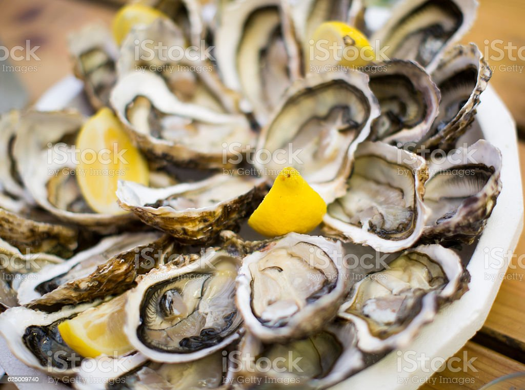 oysters on plate top view stock photo
