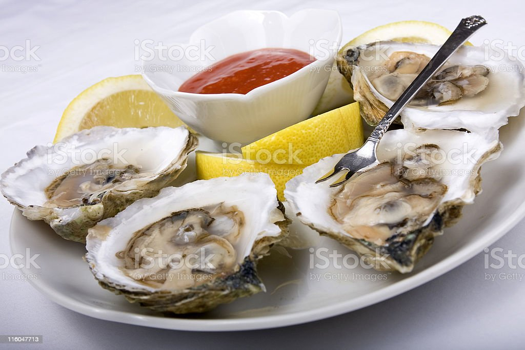 Oysters on the Half Shell royalty-free stock photo