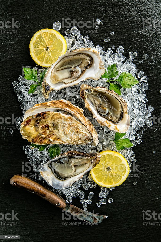 Oysters served on stone plate with ice drift stock photo