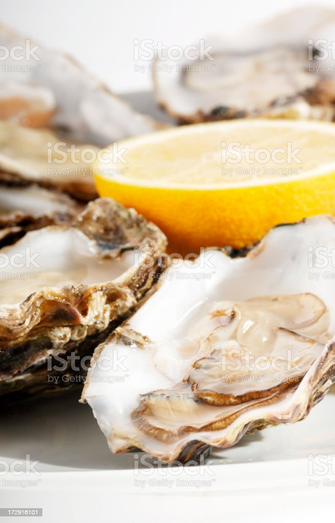 oysters with lemon royalty-free stock photo