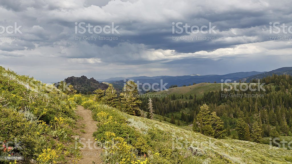 Pacific Crest Trail royalty-free stock photo