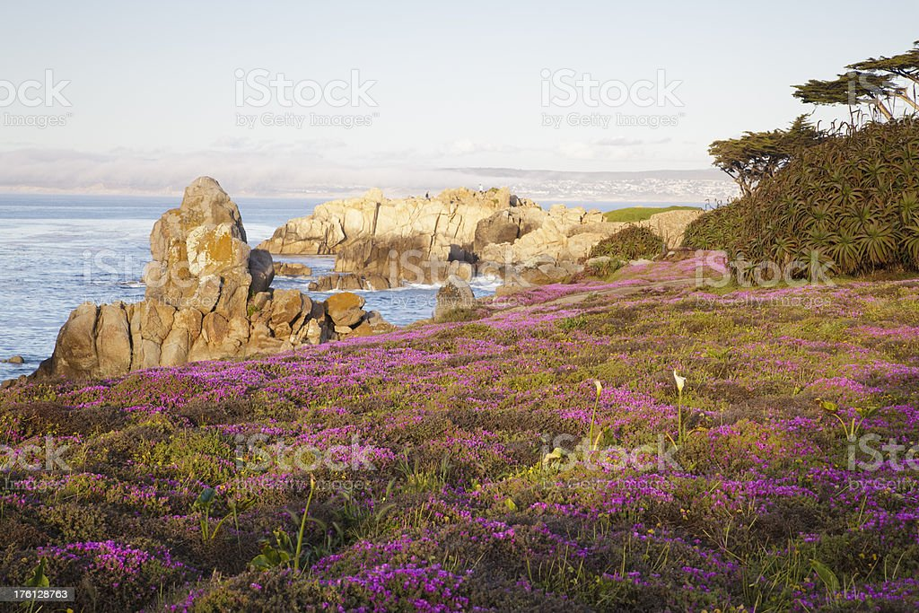 Pacific Grove and Monterey Bay, California stock photo