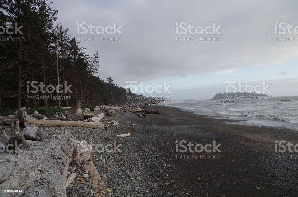 Pacific Northwest Beach stock photo