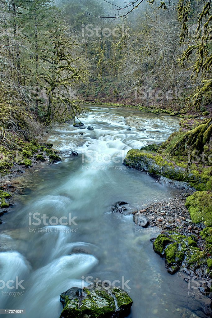 Pacific Northwest mountain river in winter royalty-free stock photo
