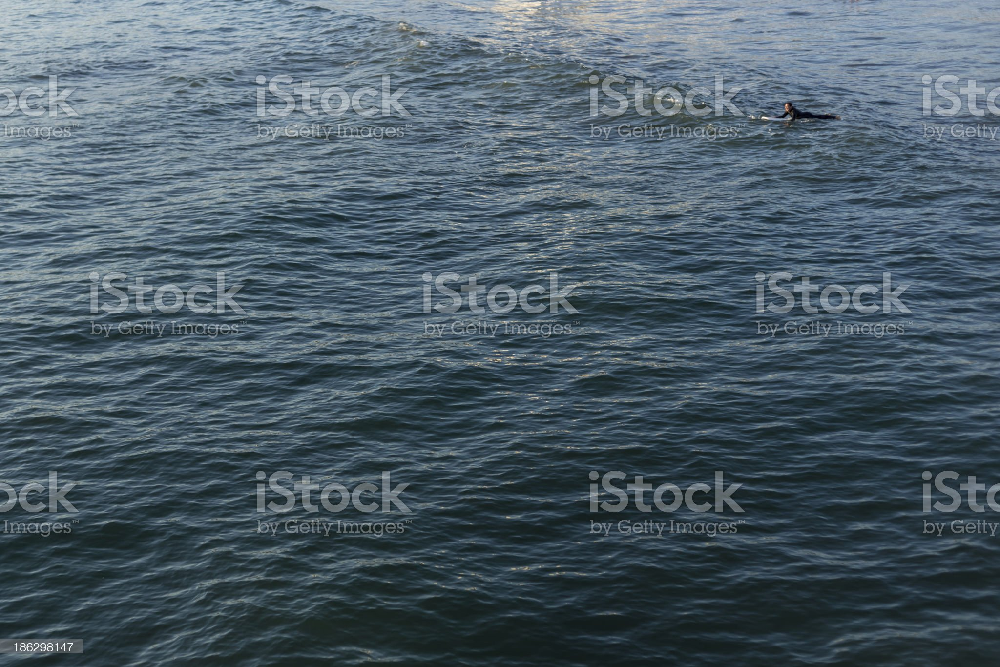Pacific Ocean and a surfer royalty-free stock photo