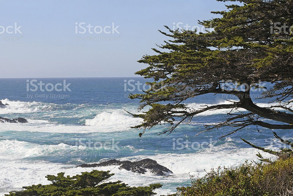 Pacific Ocean from Point Lobos, California stock photo