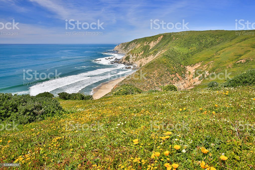 Pacific Ocean from Tomales Point Trail, Point Reyes National Seashore stock photo