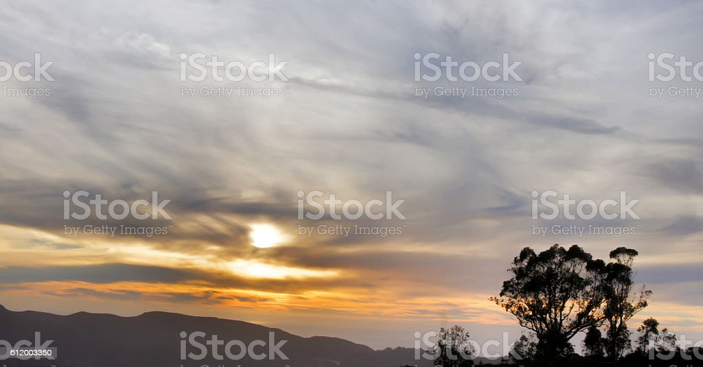 Pacific Ocean Sunset, ridge, and tree silhouette stock photo