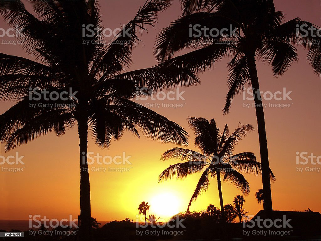 Pacific Paradise Sunset royalty-free stock photo