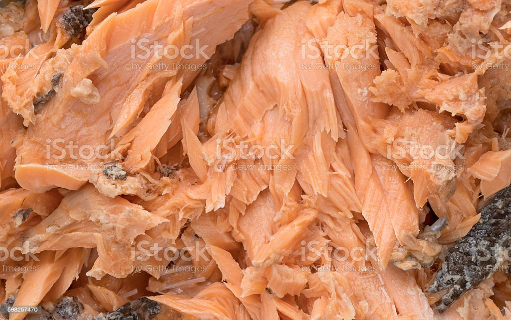 Pacific pink salmon close view stock photo