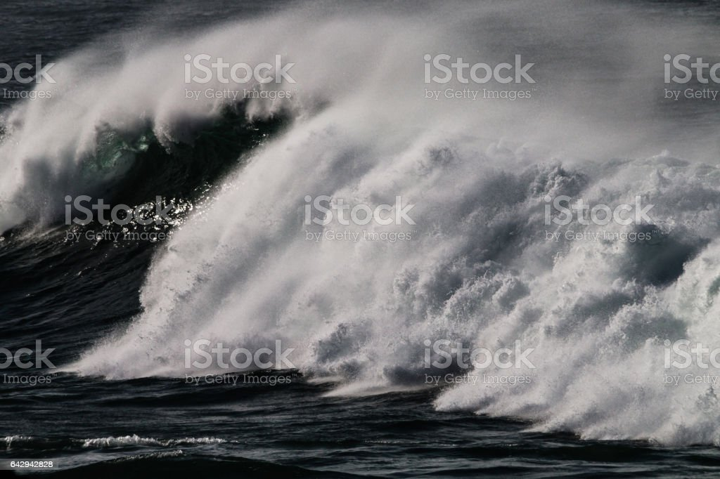Pacific Waves 3356 stock photo