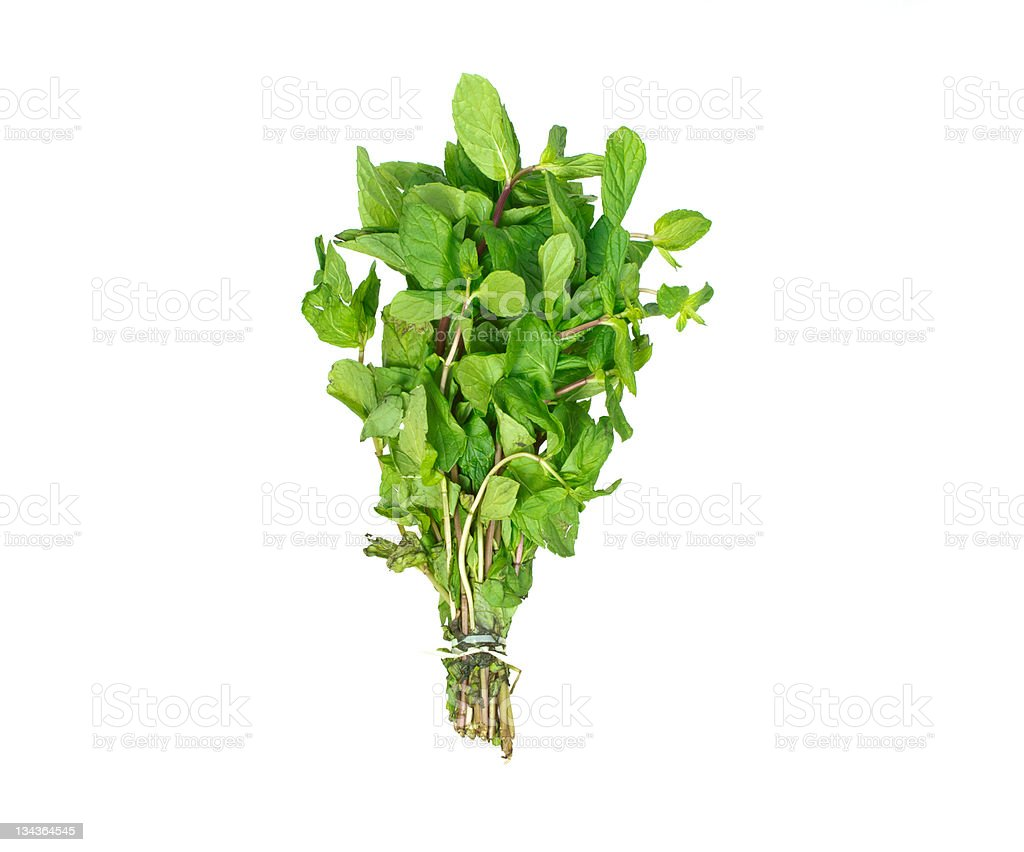 package of mint Fresh green on white stock photo