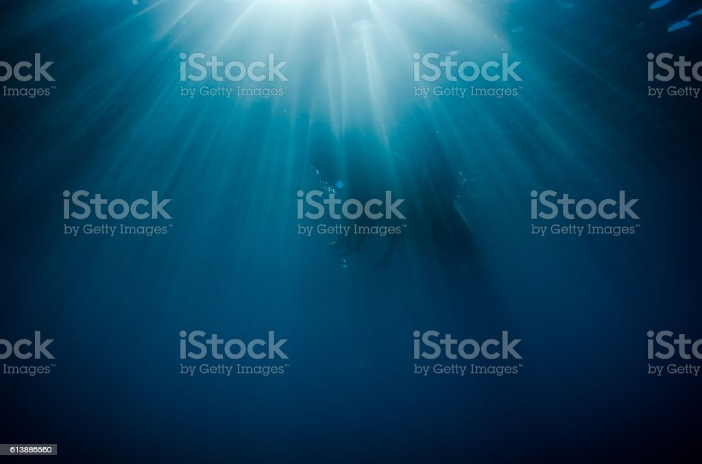 Paddle boarders sit on the surface of beautiful blue water stock photo